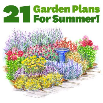 Use these plans to add color to your yard all summer long.