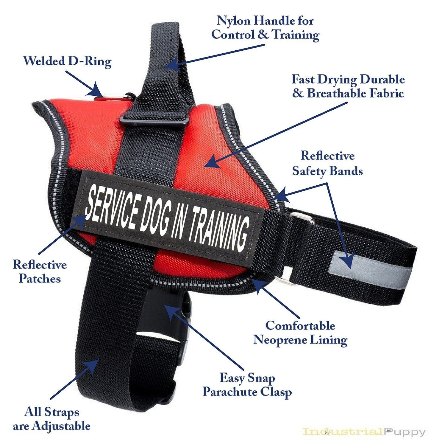 Service Dog In Training Vest Harness Service Dog Harness With 2