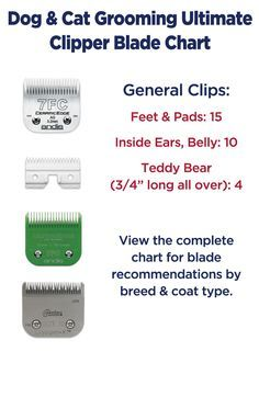 Dog grooming clipper blade chart by breed and coat type also pet size use rh pinterest