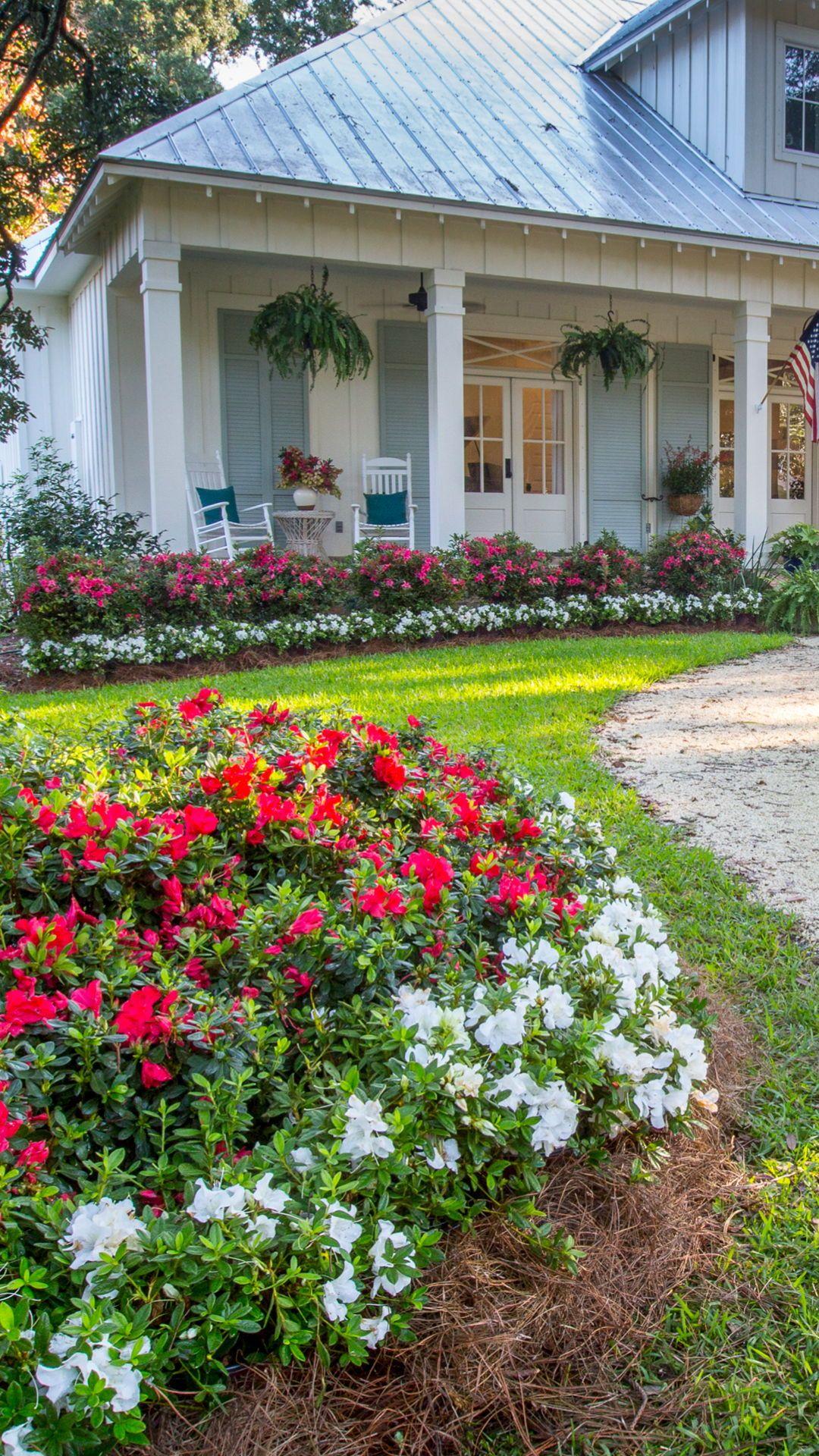 10 Best Uses For Encore Azaleas By Size Spring Garden Azaleas Flower Landscape
