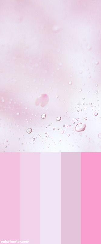 Untitled Color Scheme