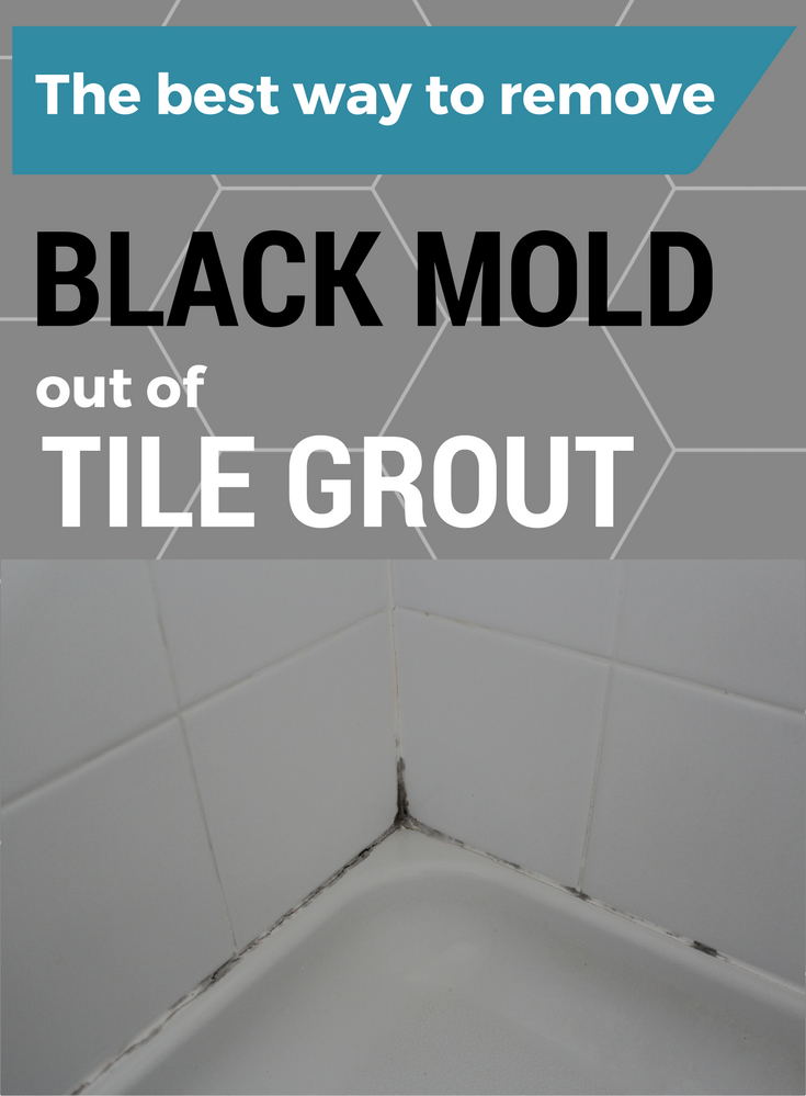 The Best Way To Remove Black Mold out of Tile Grout Bathtub tile