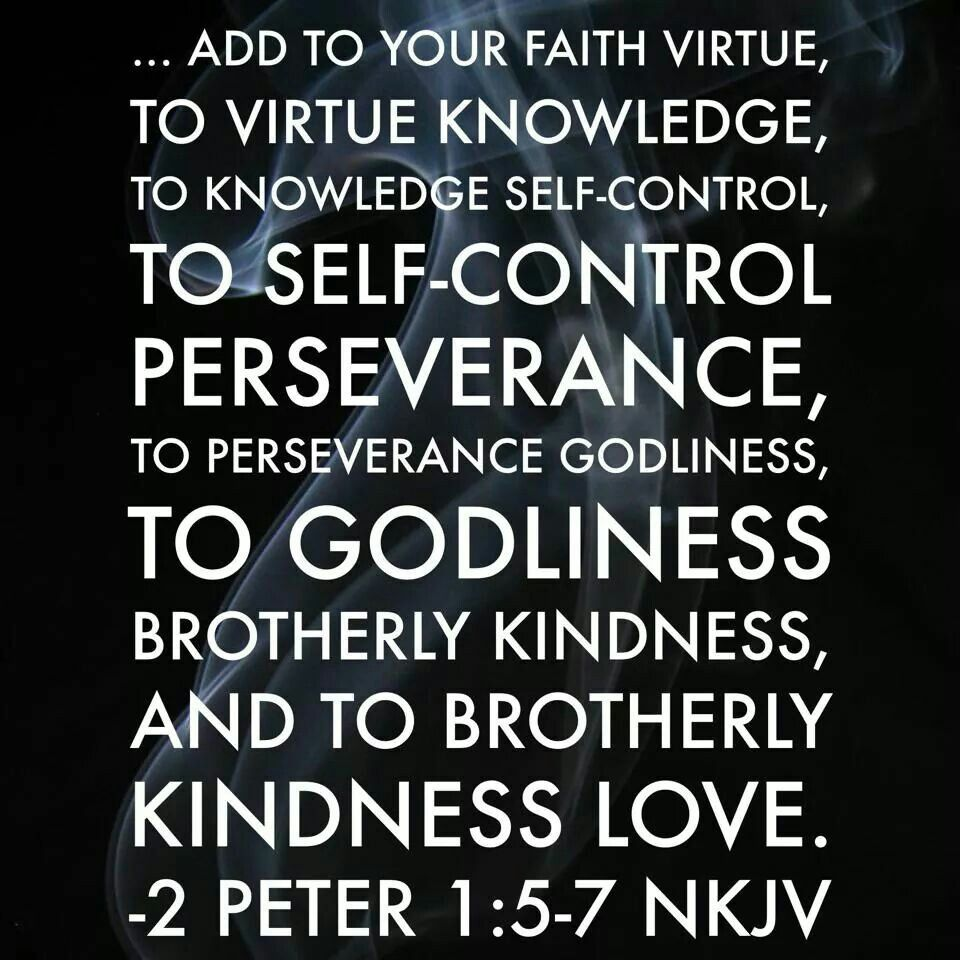 2 Peter 157 NKJV The Stronghold of Profanity