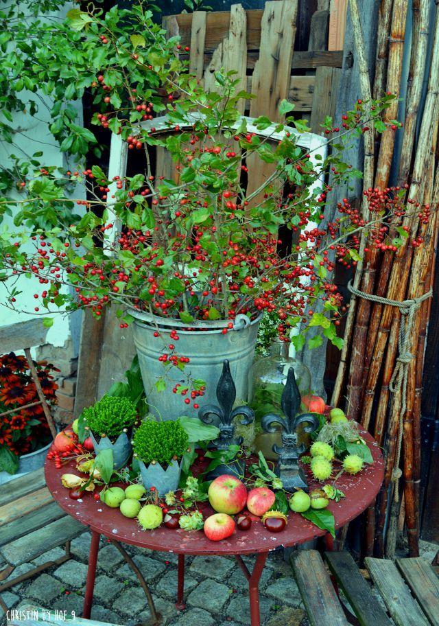 Hof 9: DIY im Herbst und ein Füllhorn der Natur im Innenhof #herbstdekoeingangsbereichdraussen