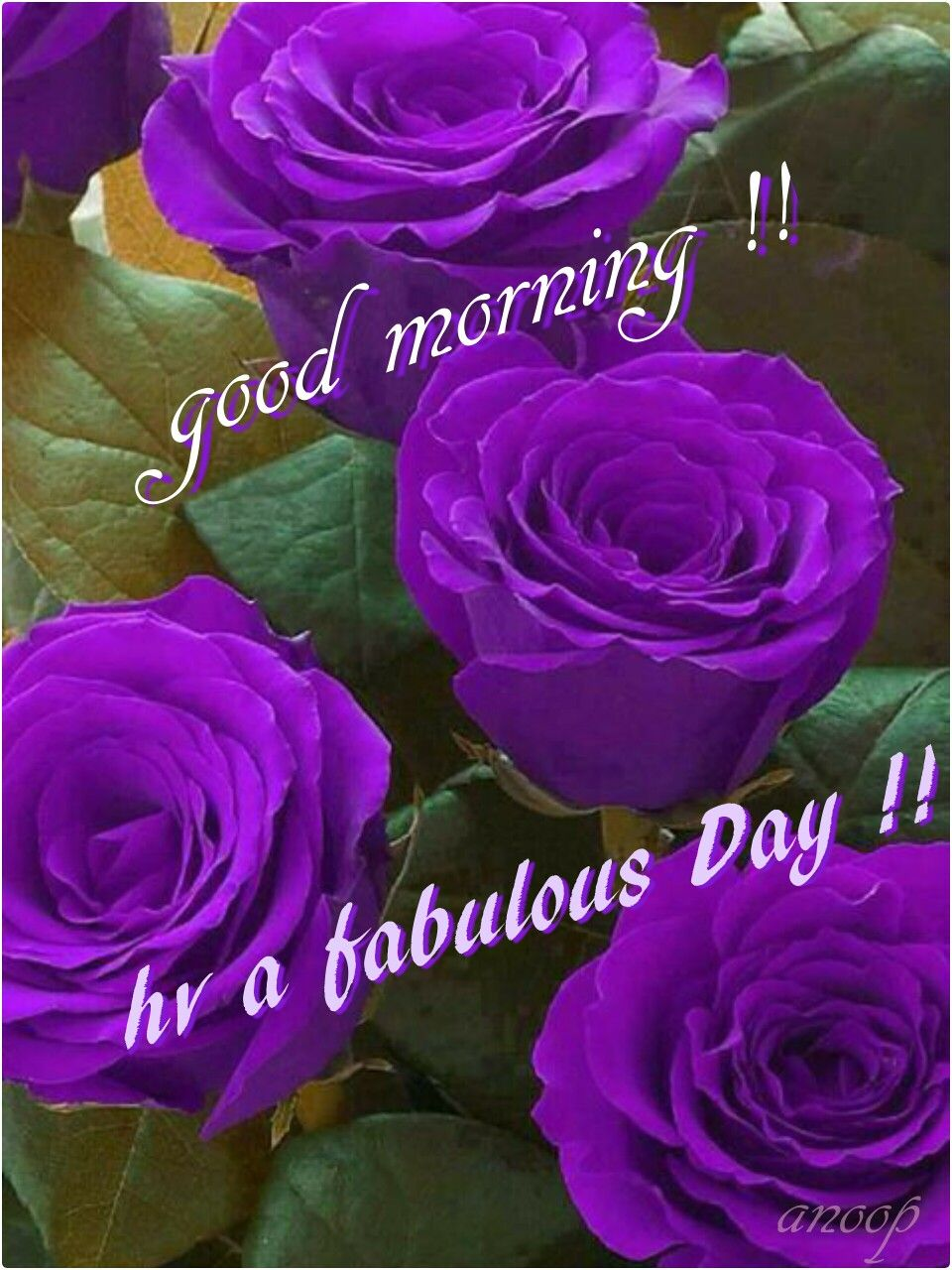 Good Morning Good Morning Pinterest Morning Greetings Quotes