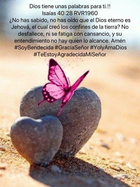 Dios tiene unas palabras para ti.!! Isaías 40:28 RVR1960 ¿No has sabido, no has oído que el Dios eterno es Jehová, el cual creó los confines de la tierra? No desfallece, ni se fatiga con cansancio, y su entendimiento no hay quien lo alcance. Amén  #SoyBendecida #GraciaSeñor #YolyAmaDios #TeEstoyAgradecidaMiSeñor