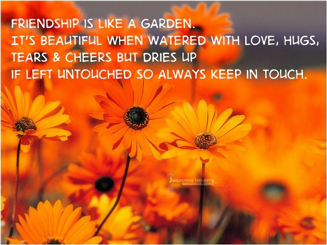Friendship is like a garden..