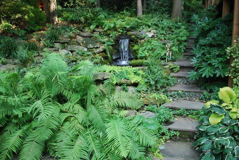 Hill Shade Garden Inspiration Eclectic Landscape By Jay Sifford Garden Design Shade Garden Design Woodland Garden Shade Garden