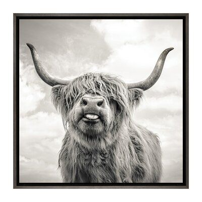 East Urban Home Funny Girl By Mark Gemmell Photograph Print Wayfair In 2020 Cow Canvas Highland Cow Canvas Canvas Art Prints