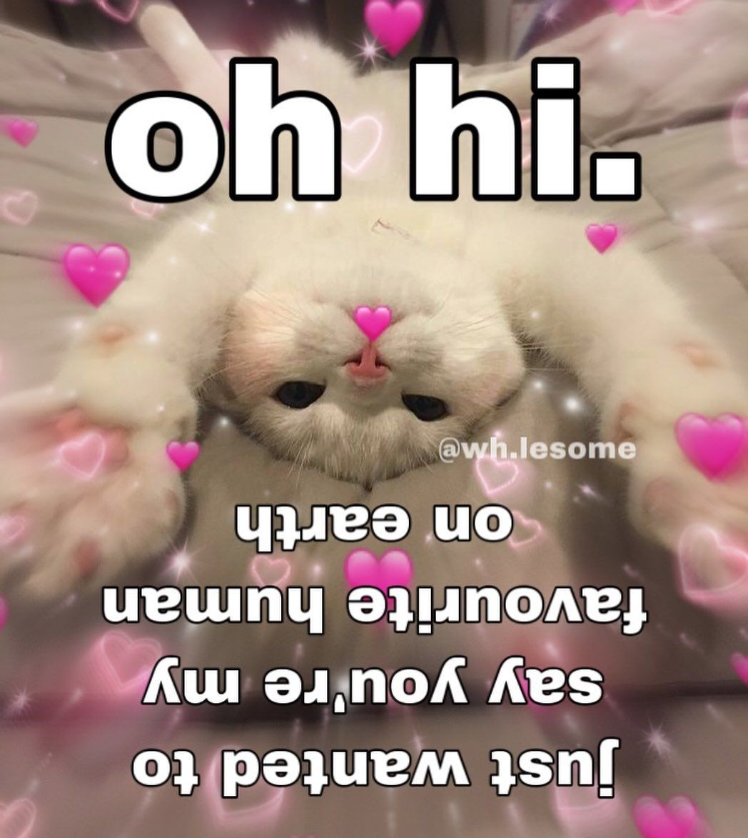 Pin by Novalie on compliment jar Love you meme, Love