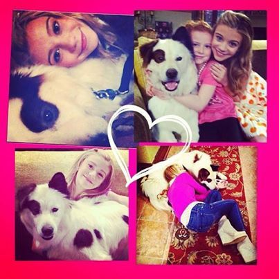 Thank you @infinity_hanneliator for this awesome #DogWithABlog edit! Love love love it!!! #Disney #Ghannelius