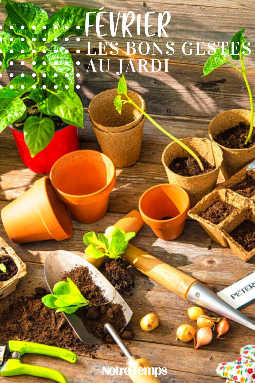 Que Faire Dans Le Potager En Fevrier l'agenda du jardinier: que faire en février? en 2020