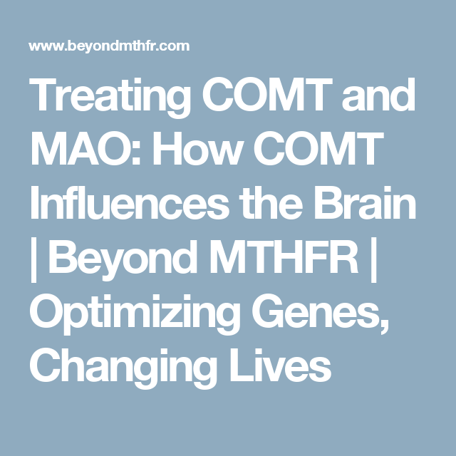 Genetic Makeup Of An Organism Captivating Treating Comt And Mao How Comt Influences The Brain  Beyond Mthfr Decorating Design