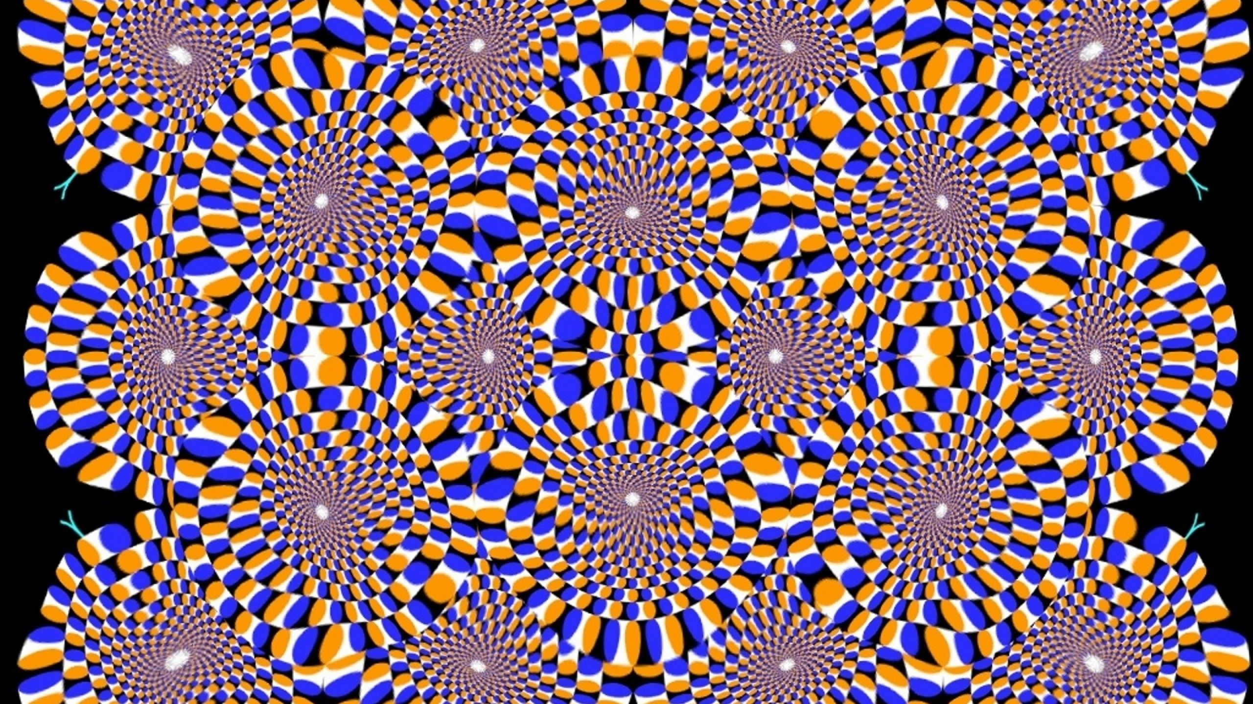 Photos illusion car moving optical illusion spectacular optical - Covers Facebook Background Images Optical Illusions Wallpaper Backgrounds Trippy Timeline Html