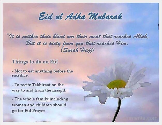 Sms Ucapan Selamat Hari Raya Idul Adha  Wallpaper Keren