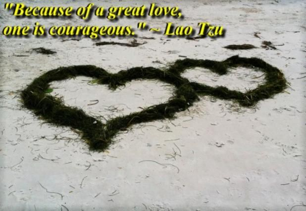 """""""Because of a great love, one is courageous."""" ~ Lao Tzu quote"""