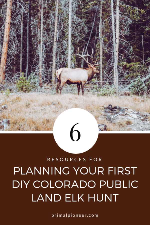 6 Resources For Planning Your First Diy Colorado Public Land Elk Hunt Elk Hunting Elk Hunting Colorado Elk
