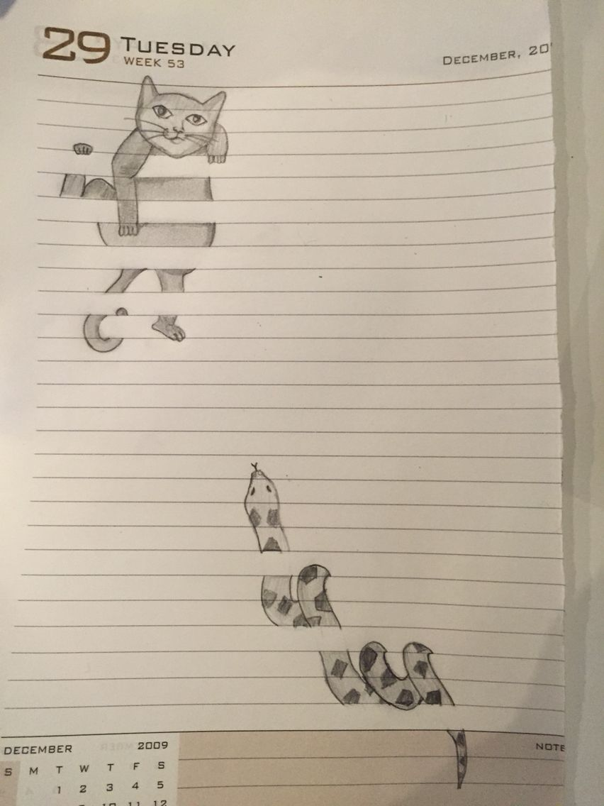 3d Cat Snake Easy Drawings Drawings On Lined Paper Funny