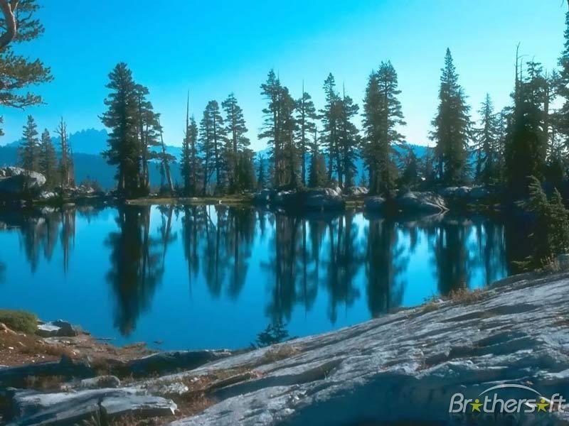 free nature screensavers download