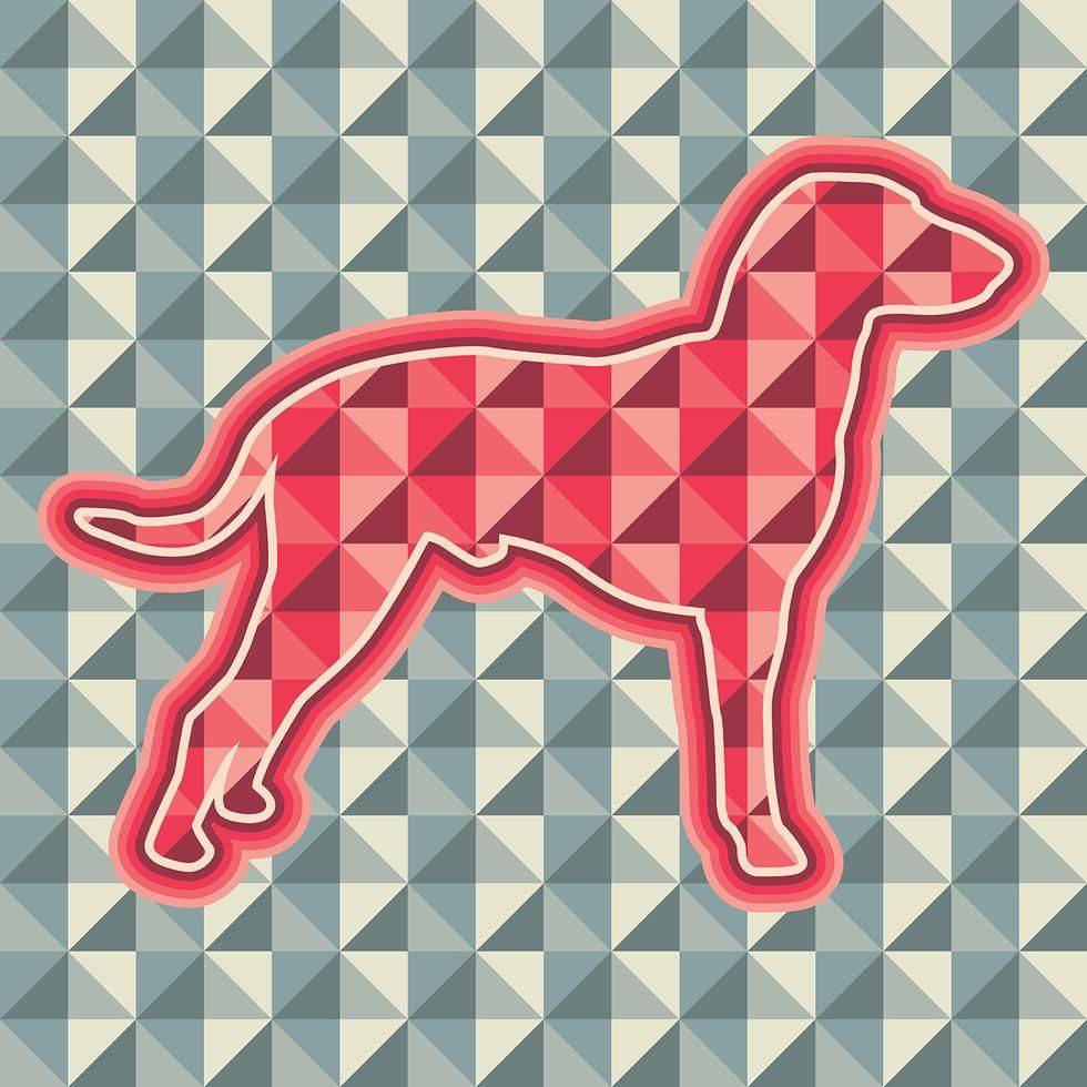 Abstract Dog Abstract Dog Vector Vector Art