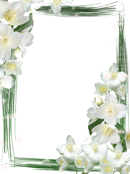 Transparent Green Frame with White Flowers | Frames | Pinterest ...
