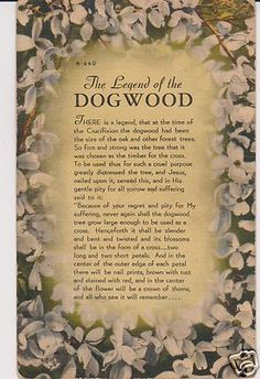 photograph about Legend of the Dogwood Tree Printable called printable legend of the dogwood tree - Google Glance