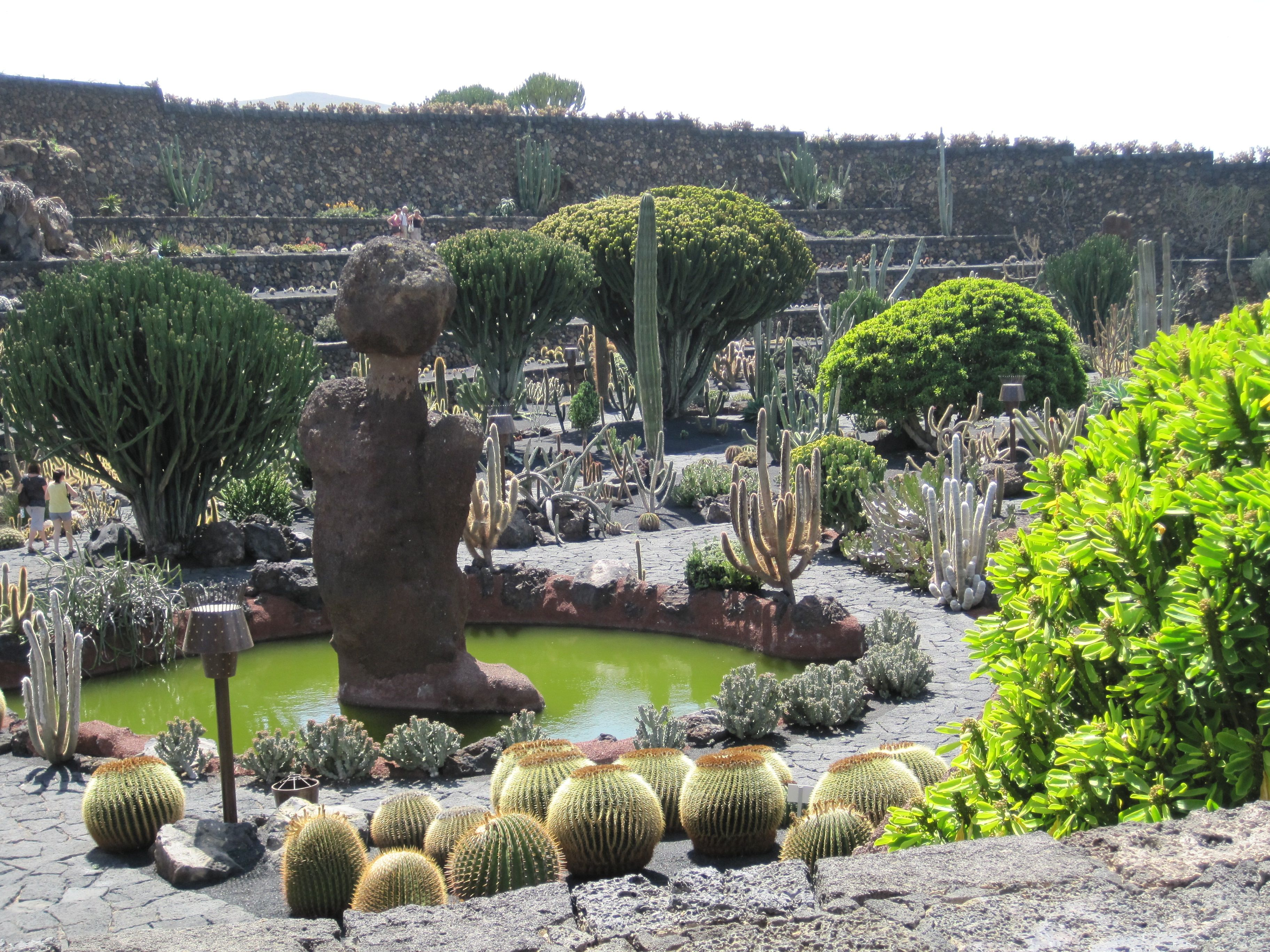 jard n de cactus lanzarote espa a jardiner a pinterest canary islands. Black Bedroom Furniture Sets. Home Design Ideas