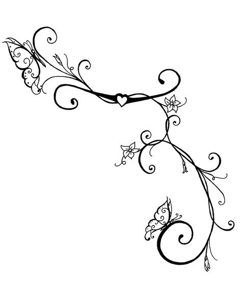 Line Drawing Vines : Ivy vine tattoo design drawings butterfly vines art