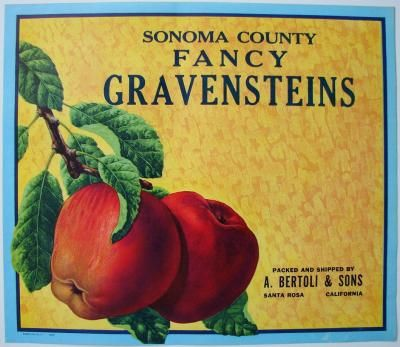 Sebastopol Sonoma Co California Gravensteins Apple Fruit Crate Label 2