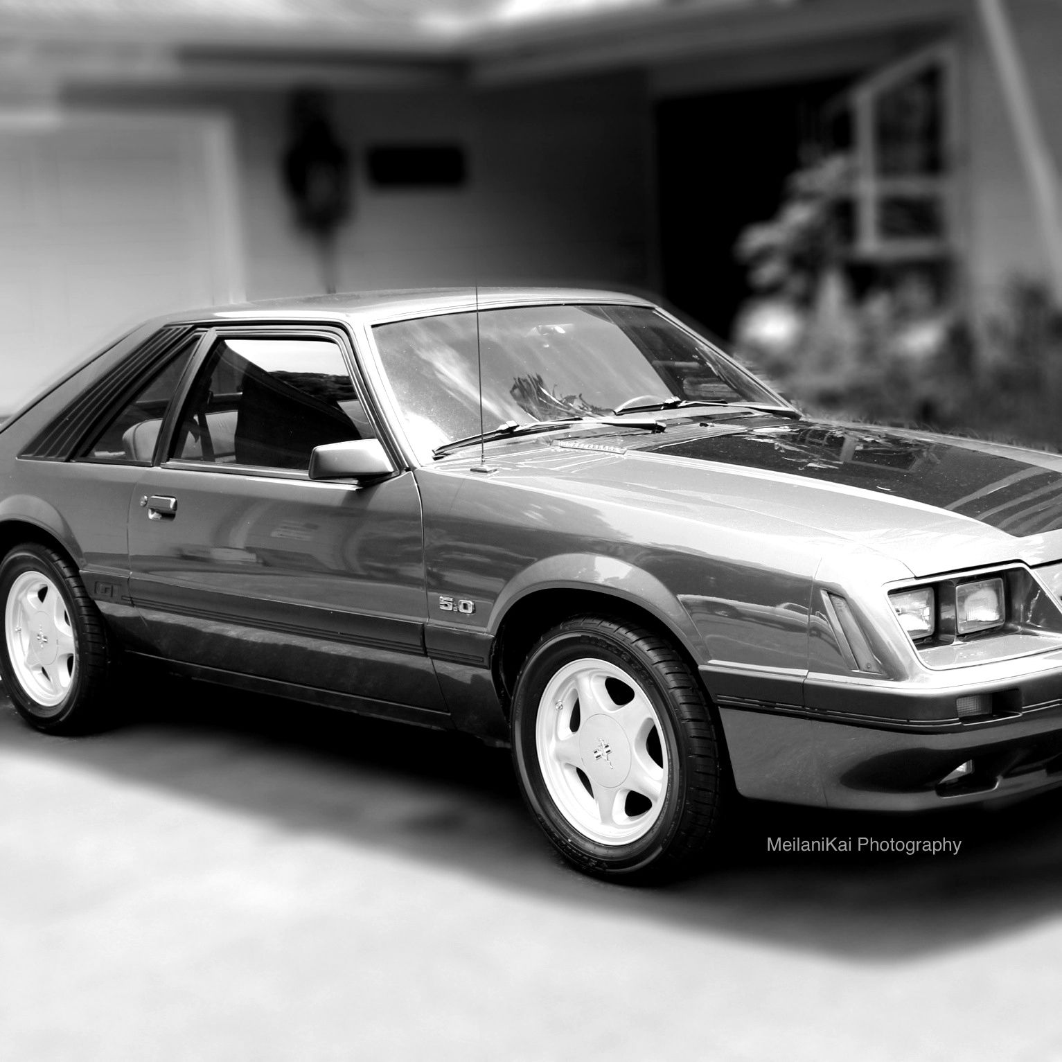 Black Mustang Silvers: My Silver Pepper Grey & Black 1986 Ford Mustang GT 5-0