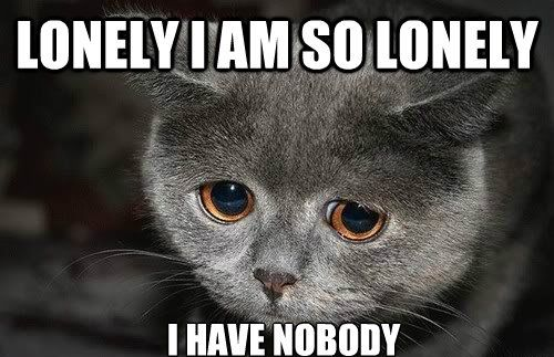 Funny Meme For Sad : Funny memes about loneliness funny memes funny