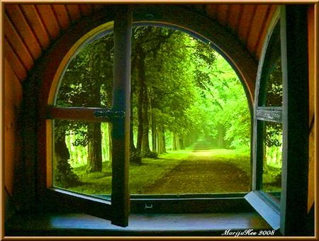 Through the window - green, open, pathway, summer, sunlight, window | Through the window ...