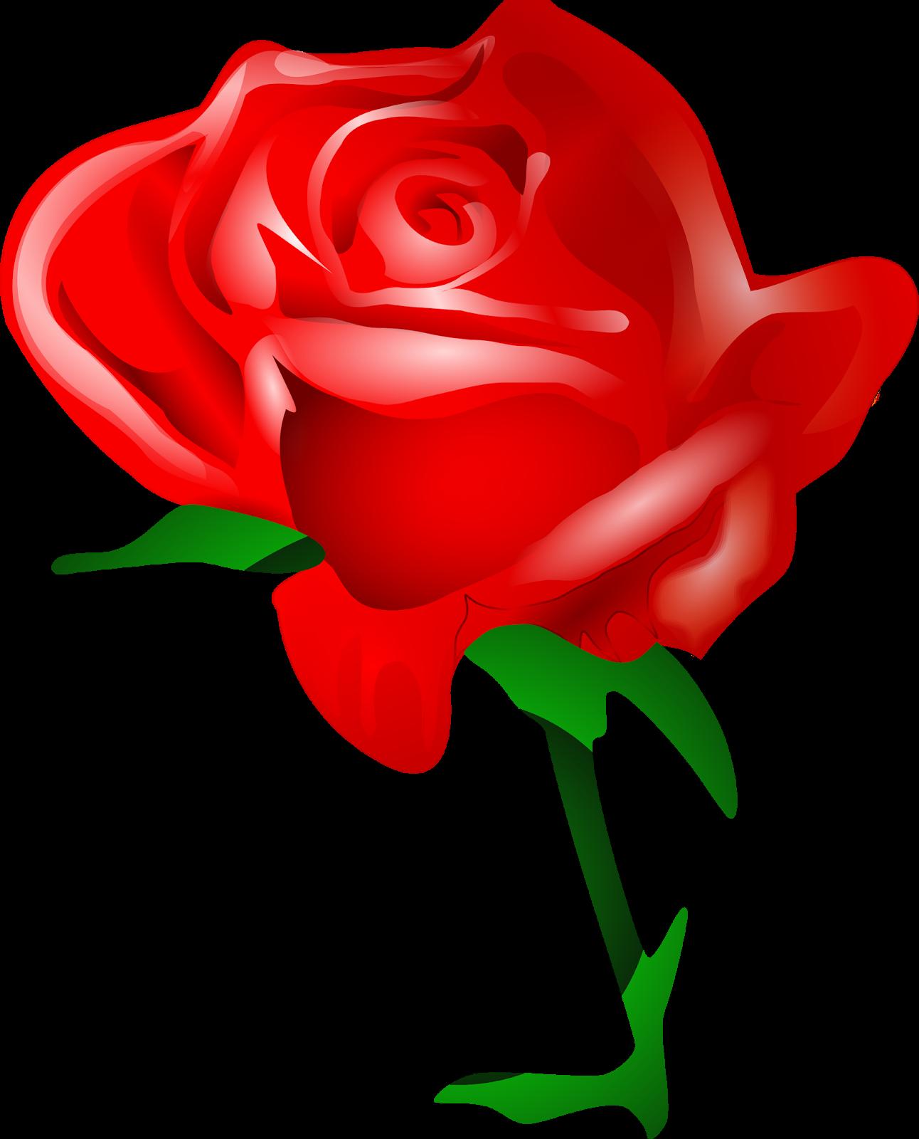Gambar Bunga Mawar 3d Di 2020