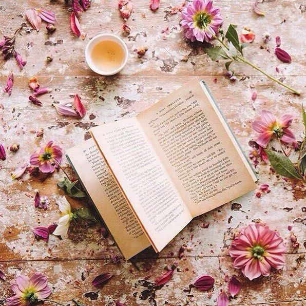 Отличное начало дня | Картинки, Книги, Закладки