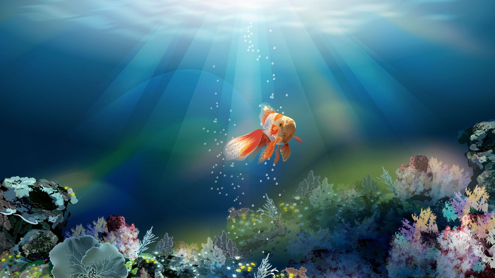 Pin By Elizabeth Allen On ~Under The Sea~
