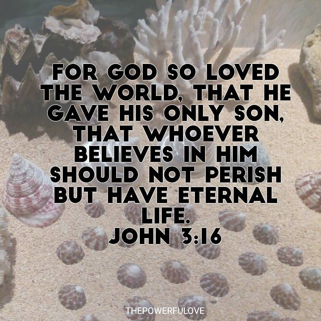 Love Is Eternal Quotes John 316 For God So Loved The World That He Gave His Only Son