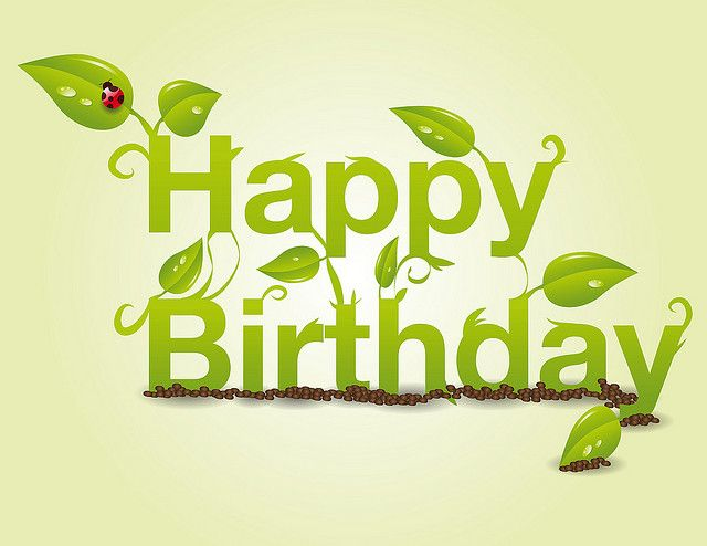 Happy Birthday Spring Gardener Lady Bug With Images