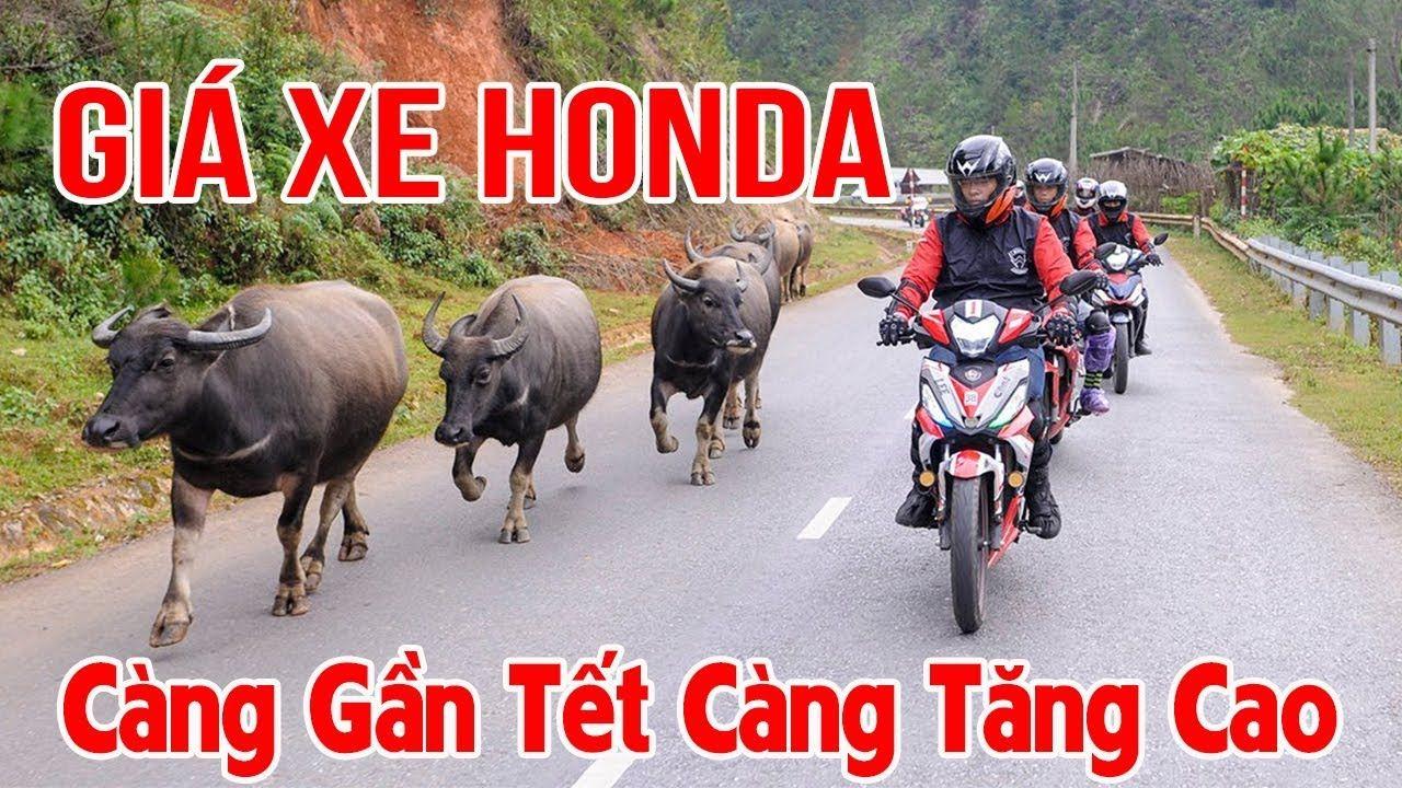 Giá Xe Honda Gần TẾT MẬU TUẤT có khả năng tăng cao do nhu cầu lớn | Giá ...