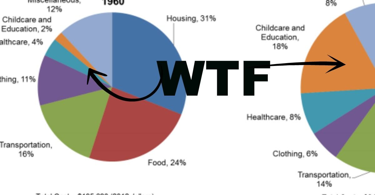 If Youre Thinking Of Having Kids Anytime Ever This Pie Chart Might
