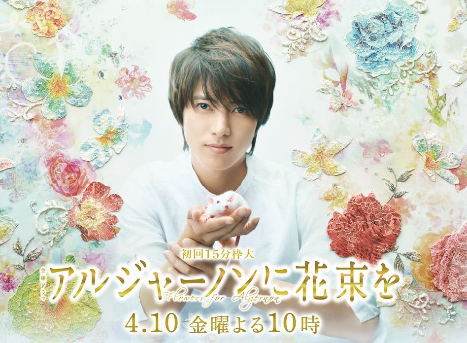 Flowers for Algernon - JDrama ~ check for full subs first | DRAMA