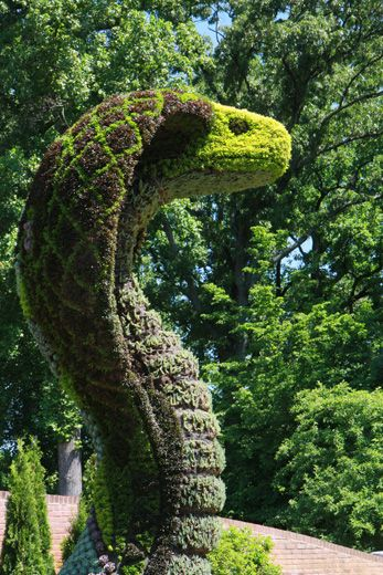 Imaginary Worlds: Plants Larger Than Life at Botanical Garden   www ...