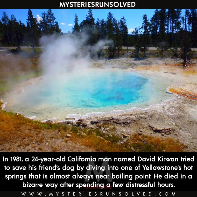 David Kirwan Died In Yellowstone Hot Spring To Rescue A