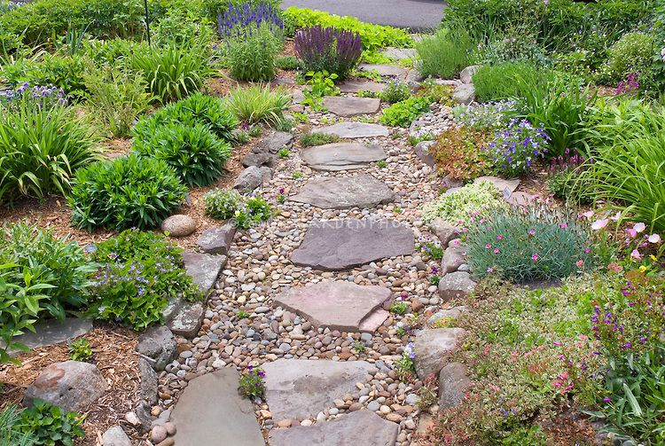 Rock Garden On Hillside Sloping Garden With Flagstone And Pebble
