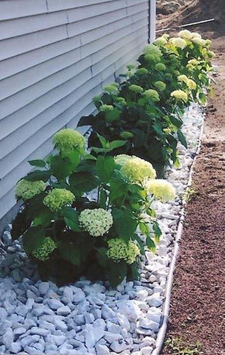 45 Pflegeleichte Ideen für die Gartengestaltung im Vorgarten - Gartengestaltung ideen, #die ...