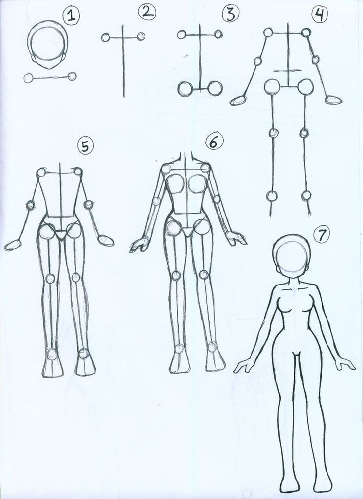 Anime Body Drawing : anime, drawing, Verse, Desenhando, Corpo, Feminino,, Tutoriais, Desenho,, Desenho