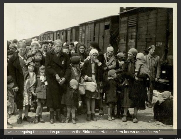 THE AUSCHWITZ ALBUM. Cry for these children, babies, mothers, sisters, et al. This is the last moments of their life as they will be sent to the gas chamber and murdered. Look at the faces of the children in front. What must they be going through. Makes you cry