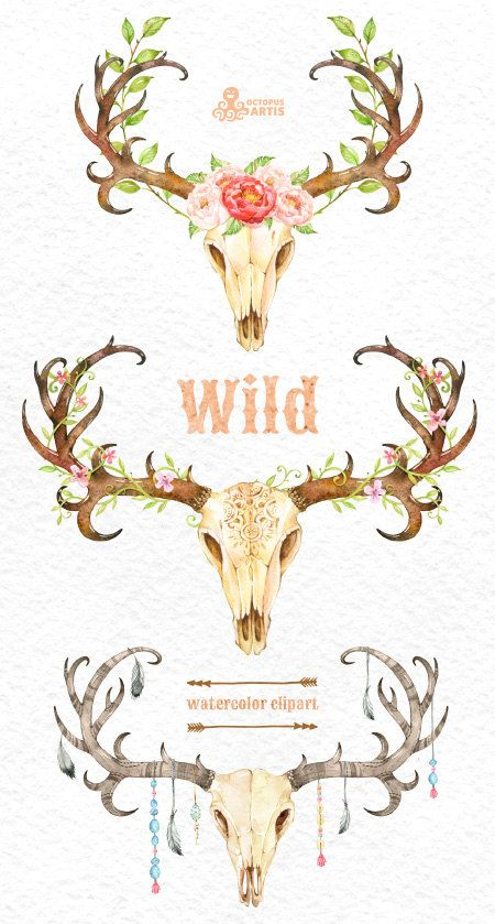 Floral Antler Tattoo: Wild. 3 Watercolor Skulls With Antlers, Hand Painted