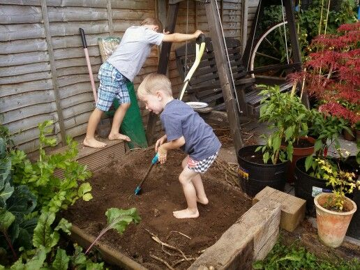 Digging up the Potatoes
