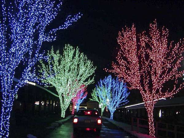 Superieur Decoration Ideas For Your Christmas Yard