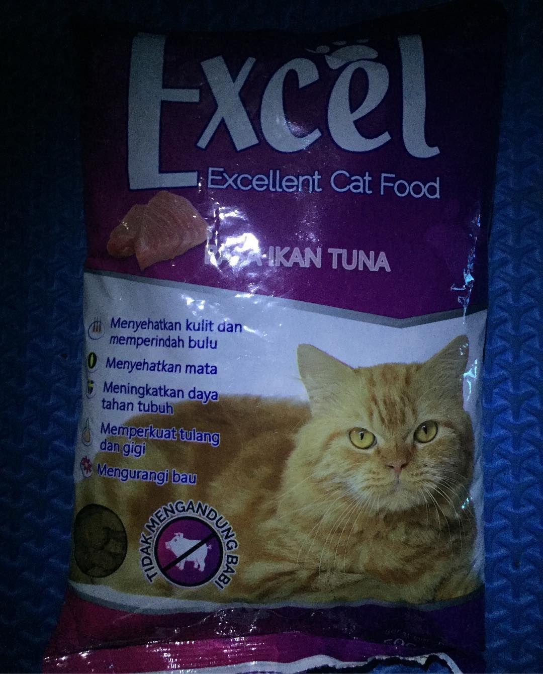 Exel Catfood Bolt Dogfood Makanankucing Catfood Petshop Krisnabirdshop Cat Food Pet Shop Cats